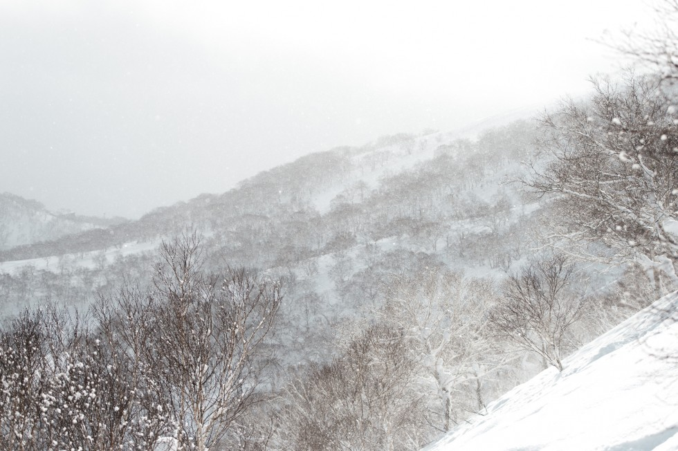 05_DSC3090-xtravel-niseko-japan-powder
