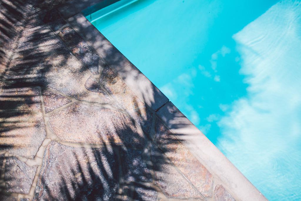 janni-deler-relax-palmspringsDSC_6116