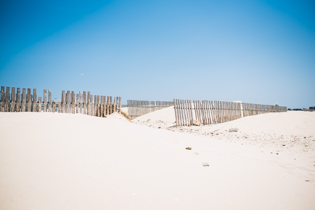 janni-deler-sand-dunesDSC_0580