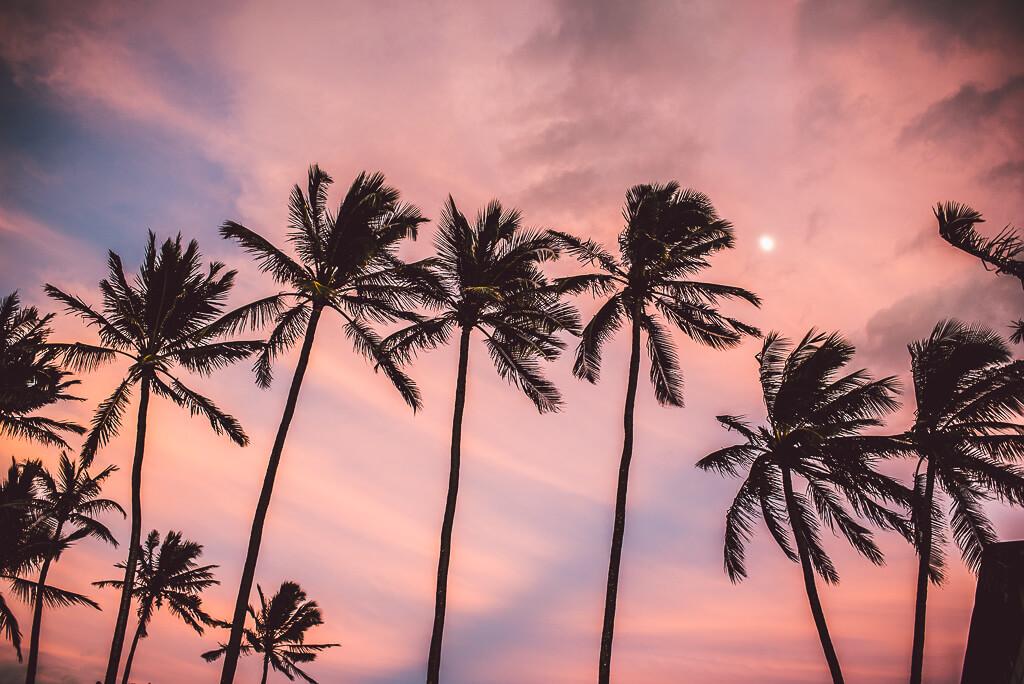 janni-deler-bonfire-hawaiiDSC_7775