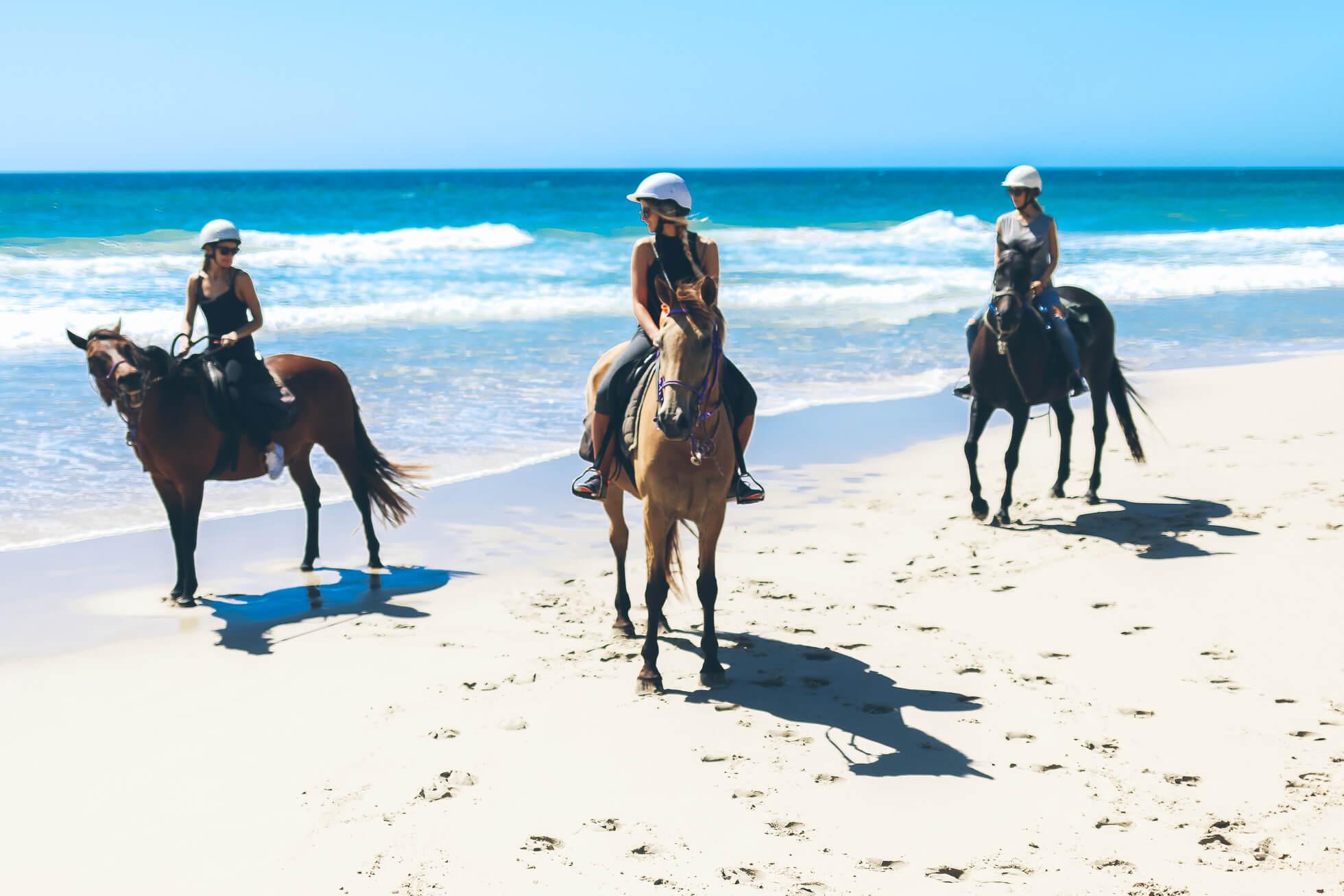 janni-deler-horseback-riding-byronbayIMG_1487