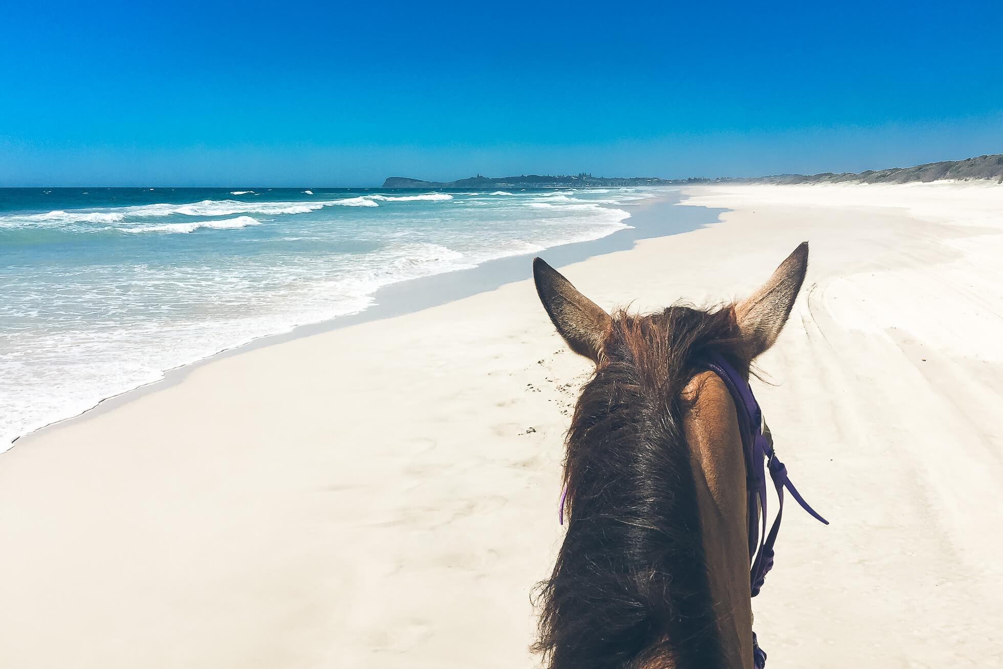 janni-deler-horseback-riding-byronbayIMG_6599 2