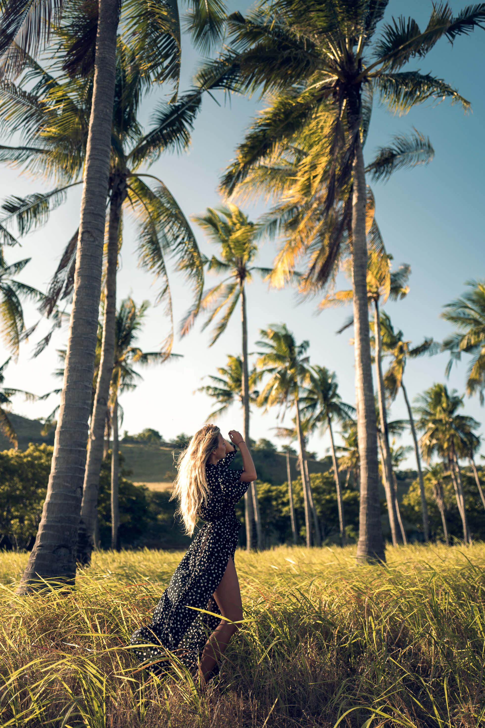 janni-deler-palm-tree-islandL1030391-Redigera-Redigera