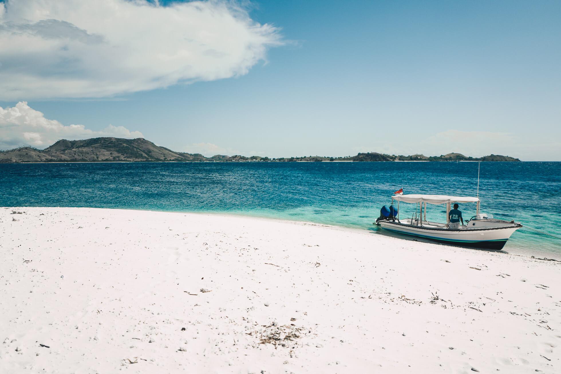 janni-deler-sea-shell-beachl1020850