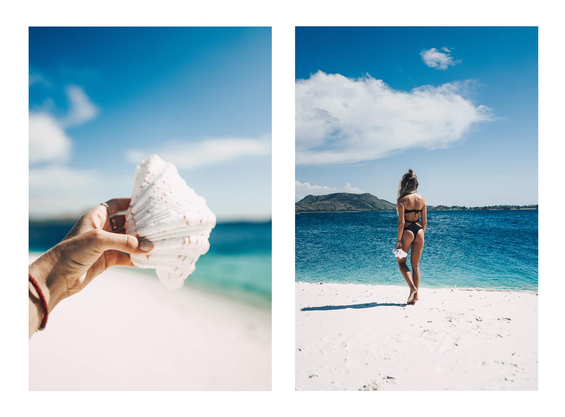 janni-deler-sea-shell-beachl1030338-copy