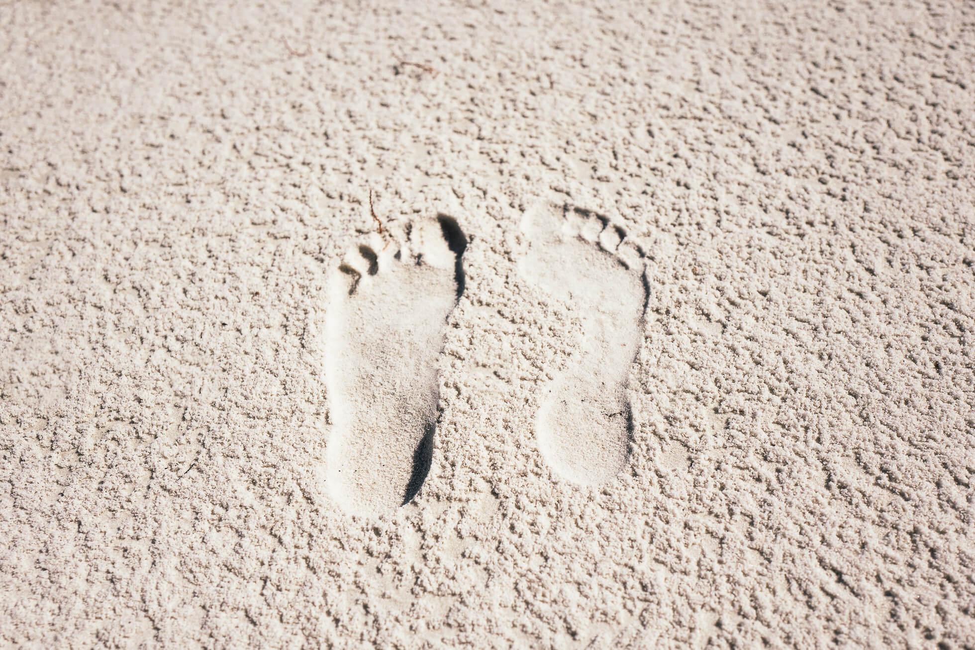 janni-deler-beach-miamil1170496