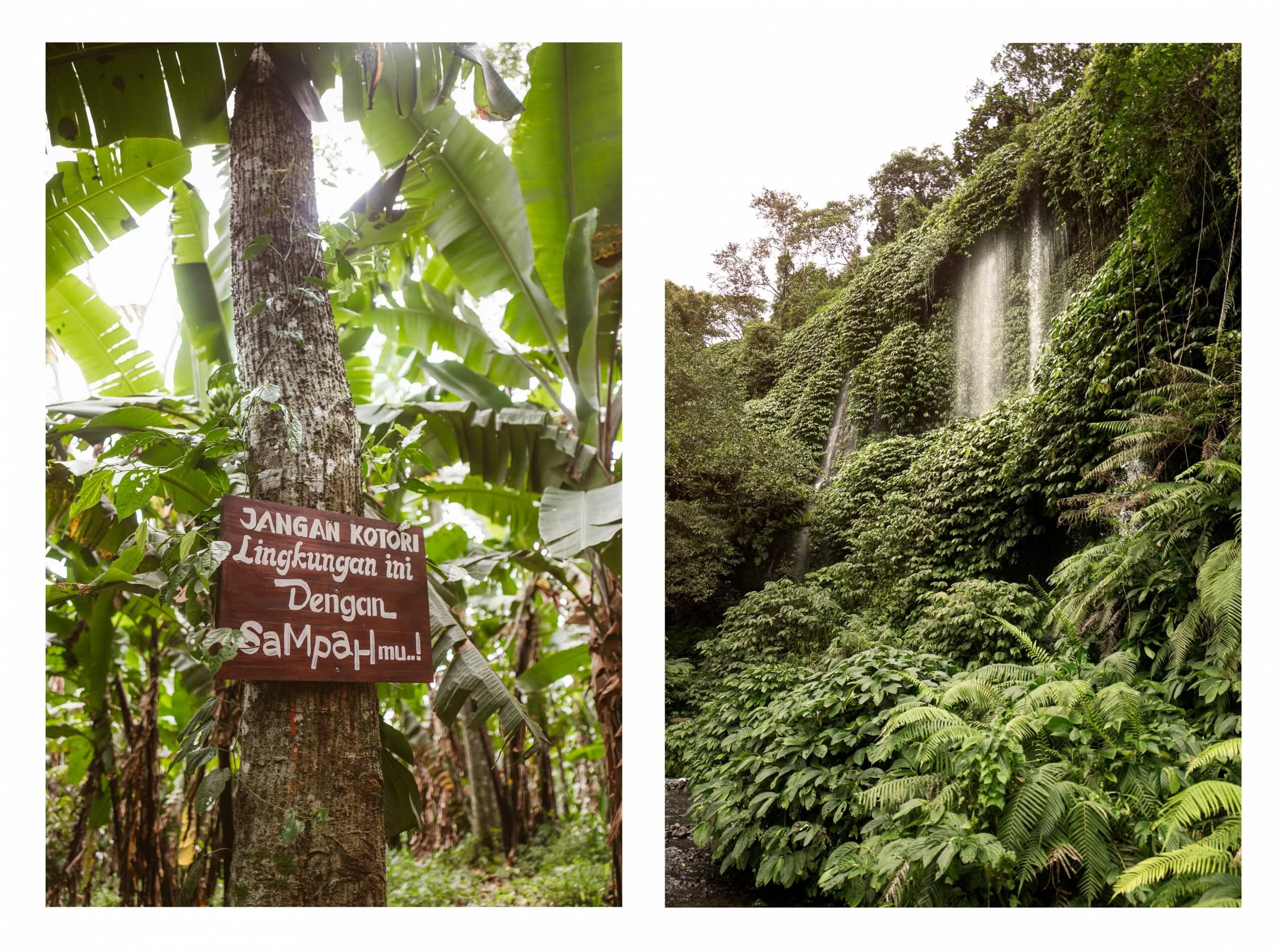 janni-deler-waterfall-lombok-1-of-7-copy